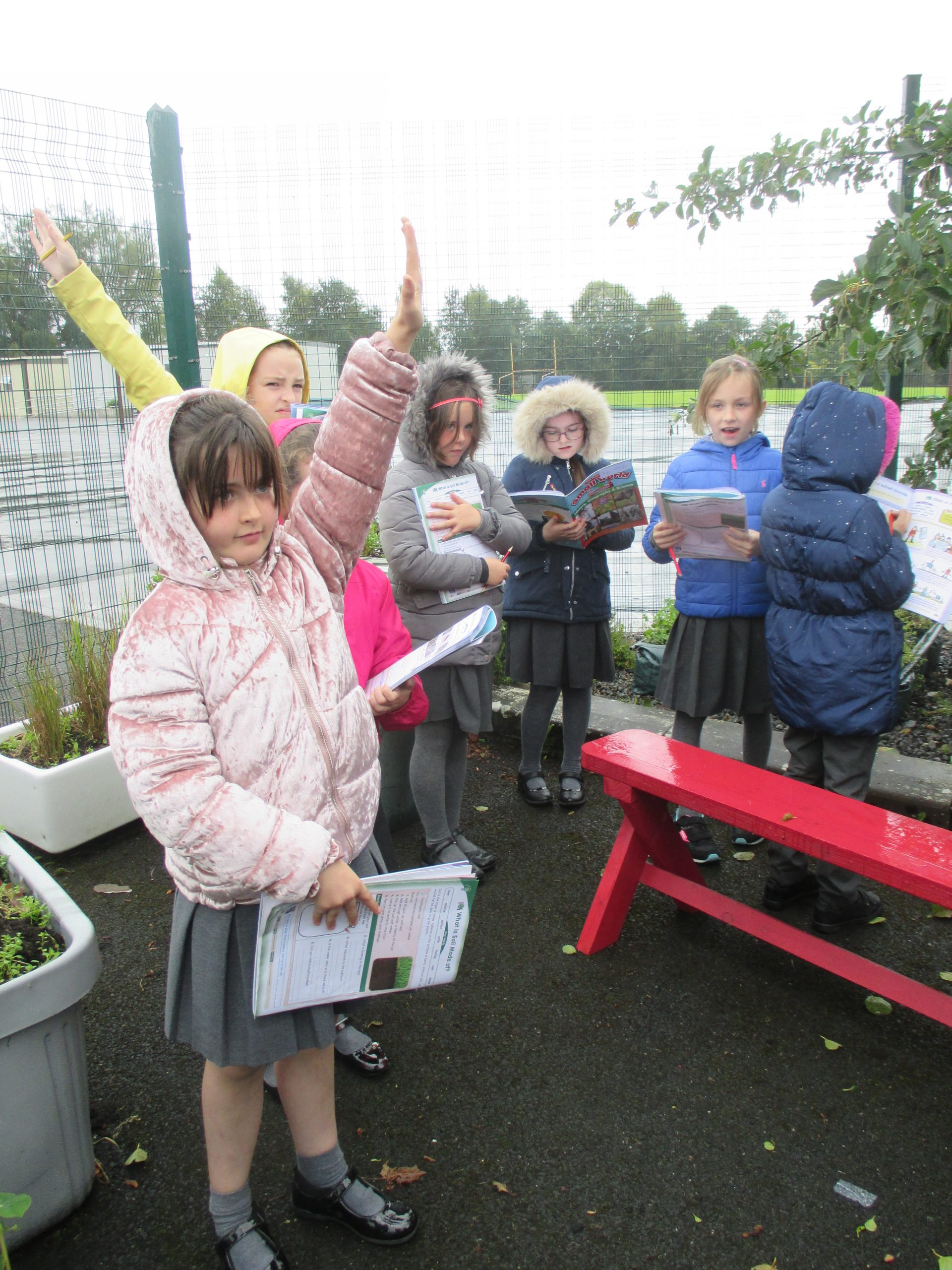 IMG 2486 scaled - Ms Cashin's Second Class Visit the Garden